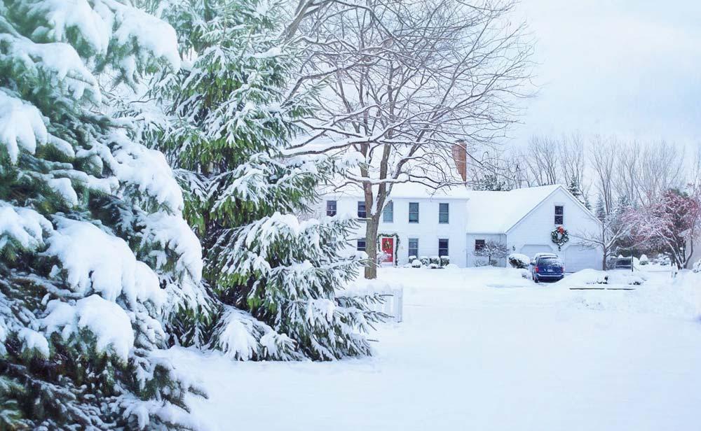 Winter Lawn Treatments
