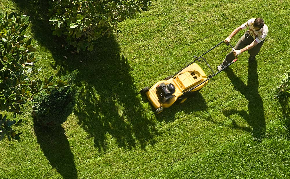 Lawn Mowing Tips and Tricks